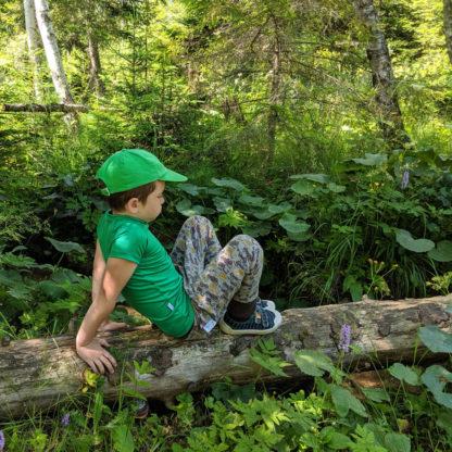 detské tričko z merino vlny zelené