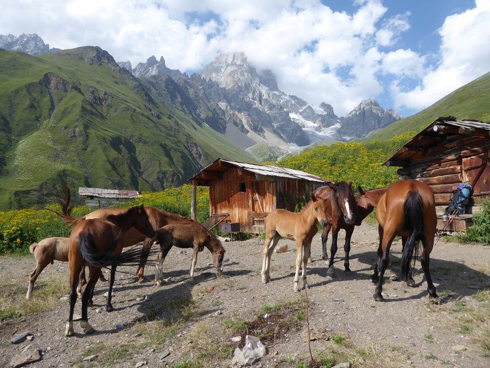Kaukaz cestovanie