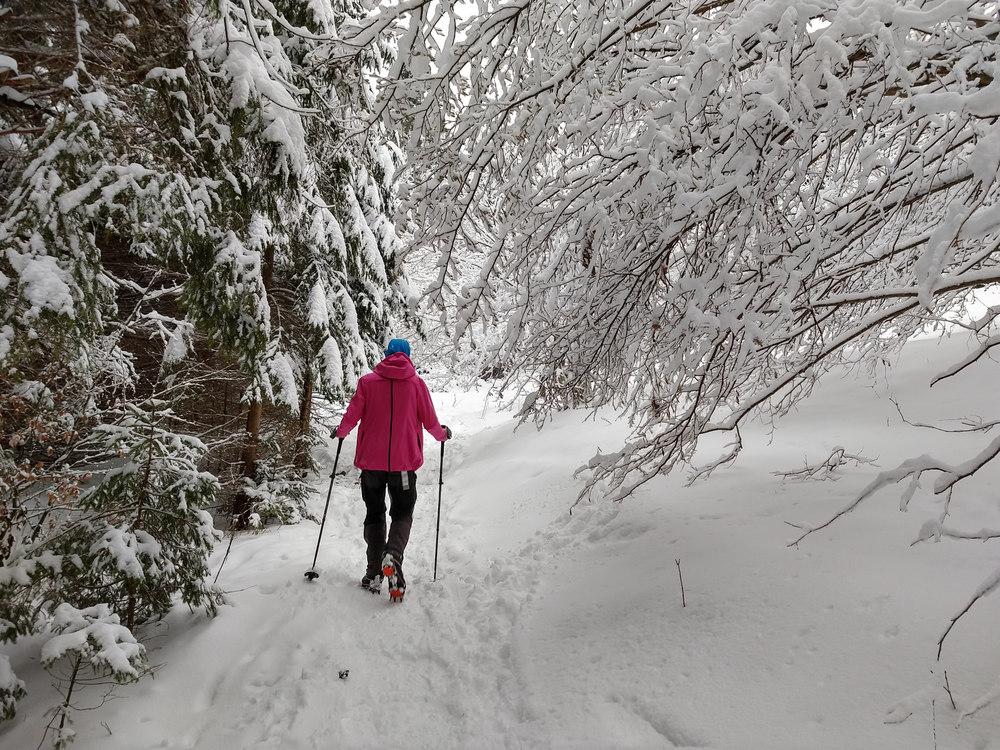 zimná turistika s deťmi